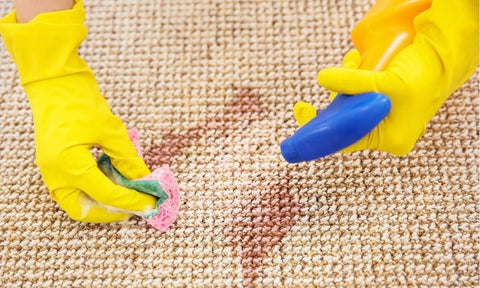 cleaning urine out of carpet