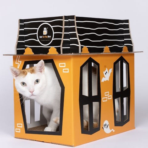 Spooky Cat Haunted Mansion by Cat in the Box