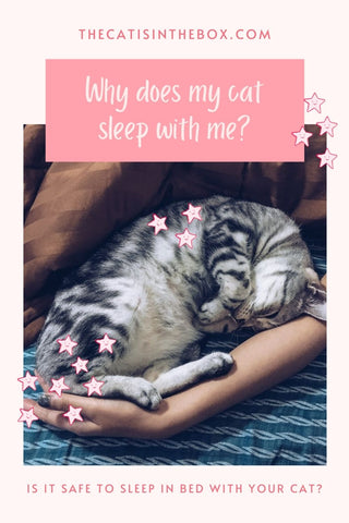 Why does my cat sleep with me? Pinterest-friendly pin
