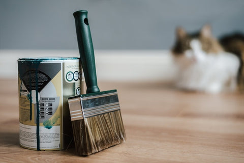 paint can and brush in a room with a cat
