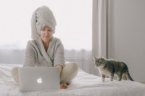 cat on bed with woman on computer