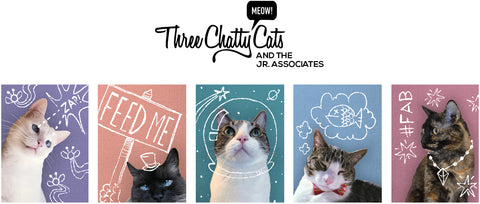 Three Chatty Cats cat blog logo