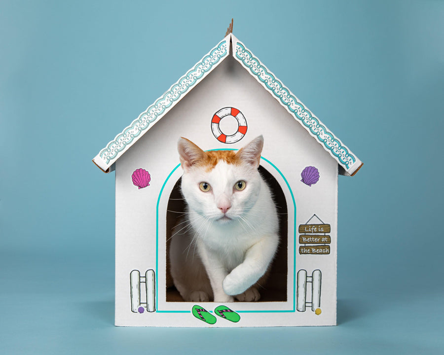 Breezy Beach Cottage Cardboard Cat Playhouse