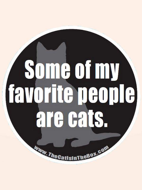 """Some of My Favorite People Are Cats"" Car Magnet"