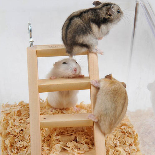 1 Pc Hamster Ladder Stand Wooden Climbing Toy Solid Playing Accessories Products for Hamster Squirrel Guinea Pig