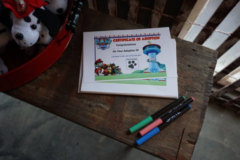 Paw Patrol Birthday Adopt a Puppy Party Favor Ideas