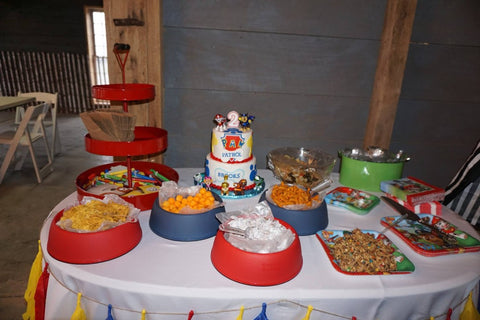 Paw Patrol Birthday Food Theme Ideas