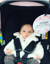 flower girl in her car seat with a stop no touching baby sign preemie gift