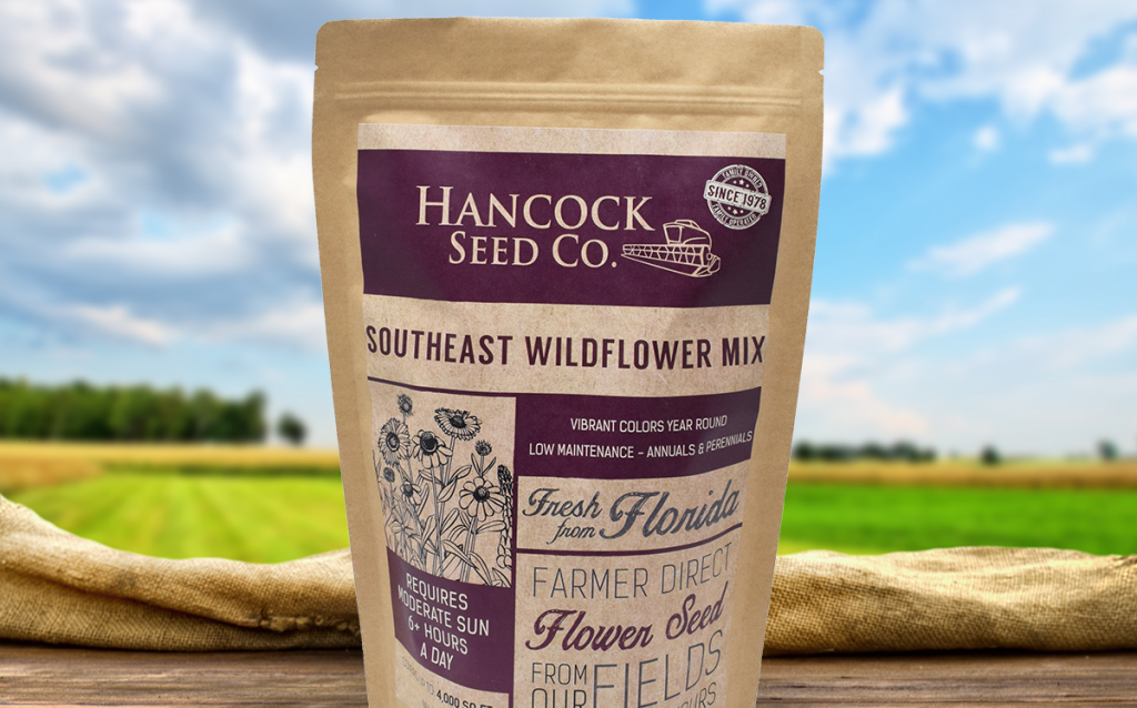 Hancock's Southeast Wildflower Mixture