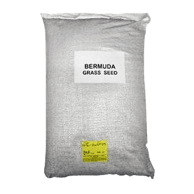 Giant Bermuda Grass Seed (Hulled Raw)