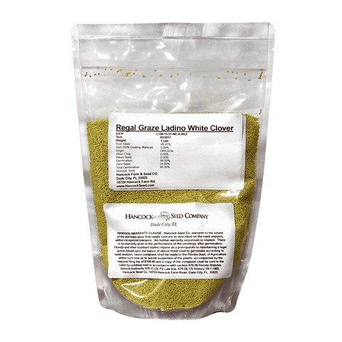 Regal Graze Ladino Clover Seed