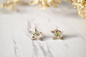 Real Dried Flowers and Resin Star Stud Earrings in Mint and Rose