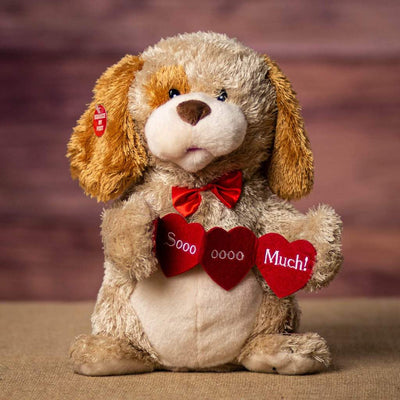 Animated Valentine Plush