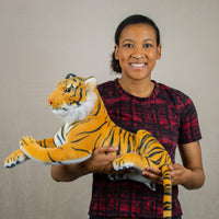 A woman holds stripped laying tiger that is 22 inches from head to tail