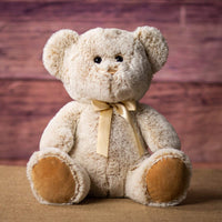 "Wholesale Stuffed Animals -  14"" Classic Bear Asst  -  19090"