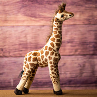 Side look at a spotted giraffe that is 19 inches tall while standing