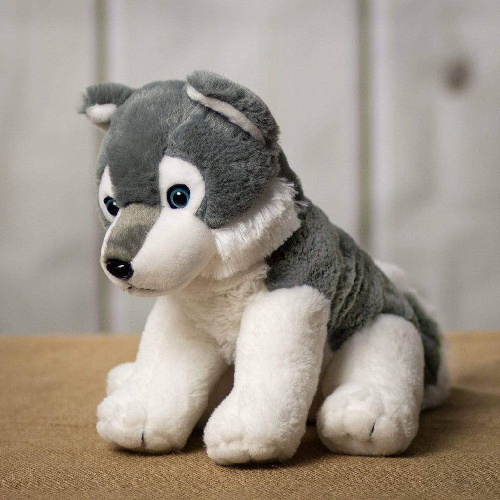 A white and grey husky that is 11 inches tall while sitting