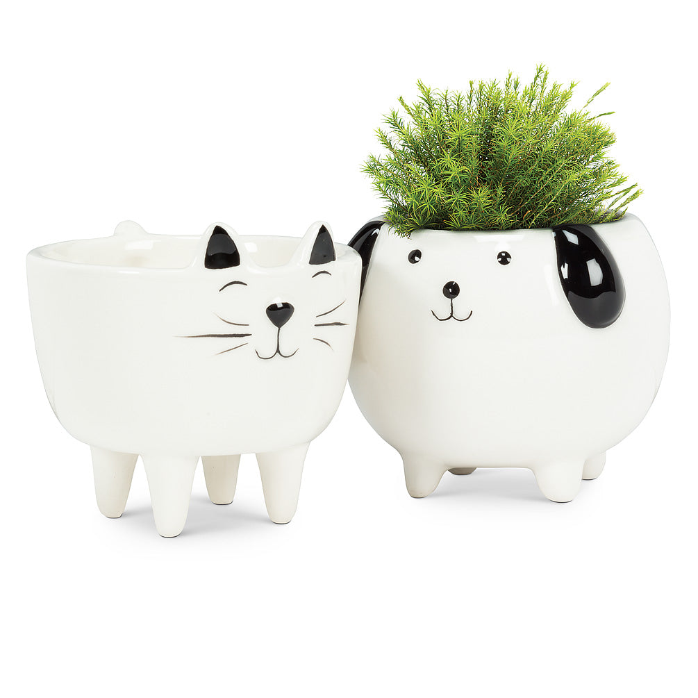 Little Pet Planters