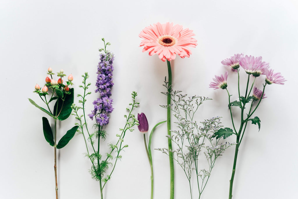 Flower Lover Subscription - Biweekly