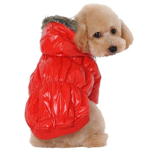 dog clothes winter coat dogs winter waterproof clothes for small dogs