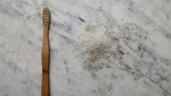 Bamboo toothbrush with bristles removed