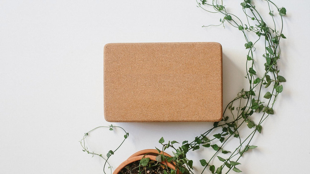 Cork Yoga Block with plant and white background