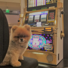 Pooh playing poker slots in Vegas