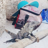 Tulum Mexico | Wandering Heart Travel Blog | Shop Wander Wear