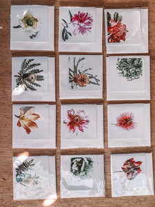 Small Gift Card by Helen Kelores - Bryants BUDS