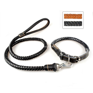 Rolled Leather Braided Dog Collar Set