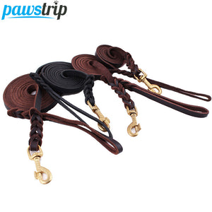 Leather Leash