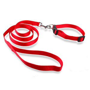Nylon Collar And Lead Set