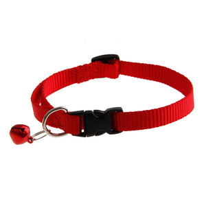 Nylon Puppy Collar