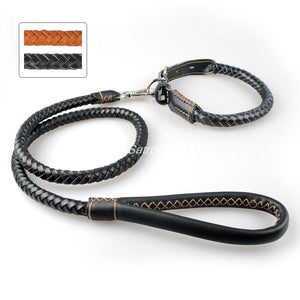 Braided Rolled Real Leather Dog Pet Collar & Leash Set