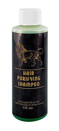 Magnum Hair Purifying Shampoo 4oz - SmokeZone 420