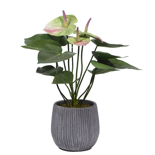 Artificial Anthurium Plant, Faux Anthurium Plant, Fake Anthurium Plant  - Bloomr