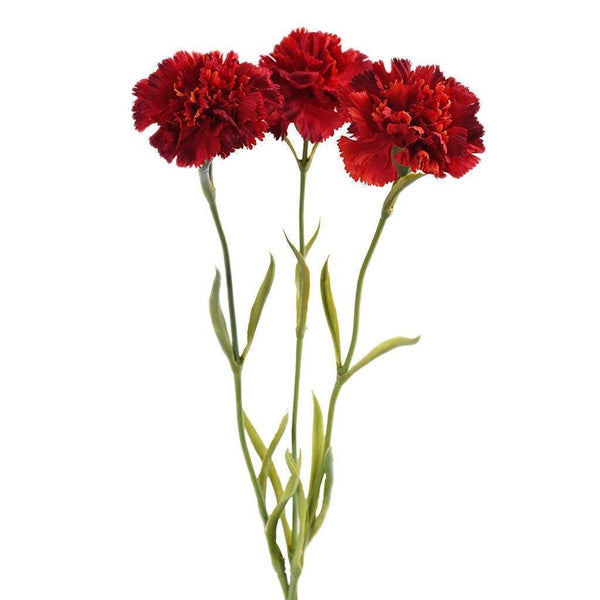 Artificial Carnation, Faux Carnation, Fake Carnation  - Bloomr