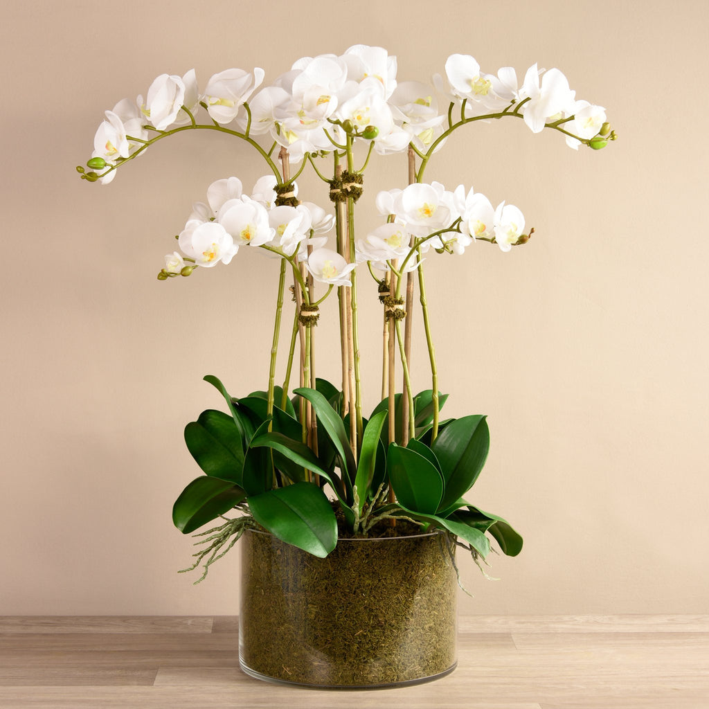 Artificial Elegant Orchid Arrangement, Faux Elegant Orchid Arrangement, Fake Elegant Orchid Arrangement  - Bloomr