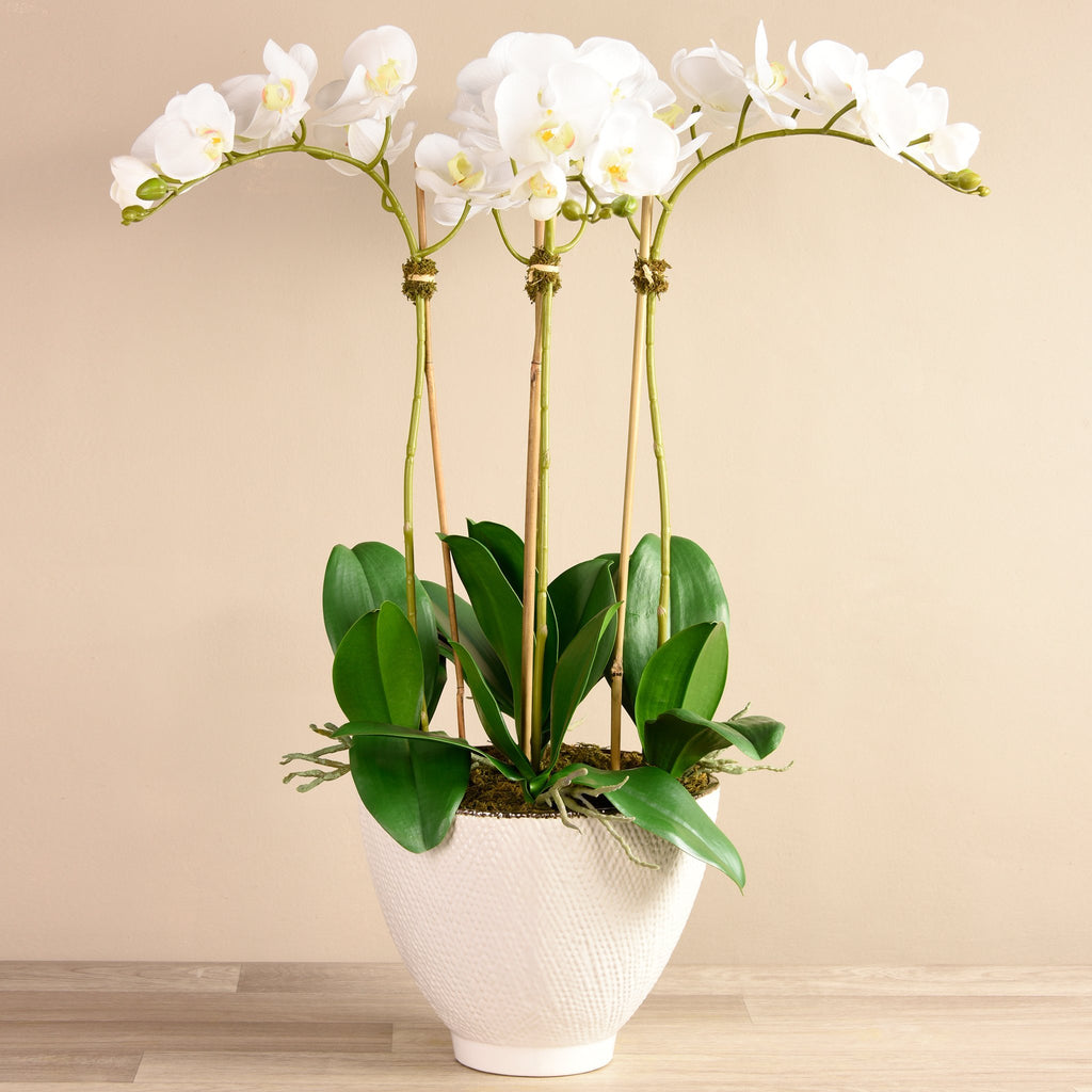 Bloomr Flowers Large / Brown Ceramic / White Rustic Orchid Arrangement artificial flowers artificial trees artificial plants faux florals