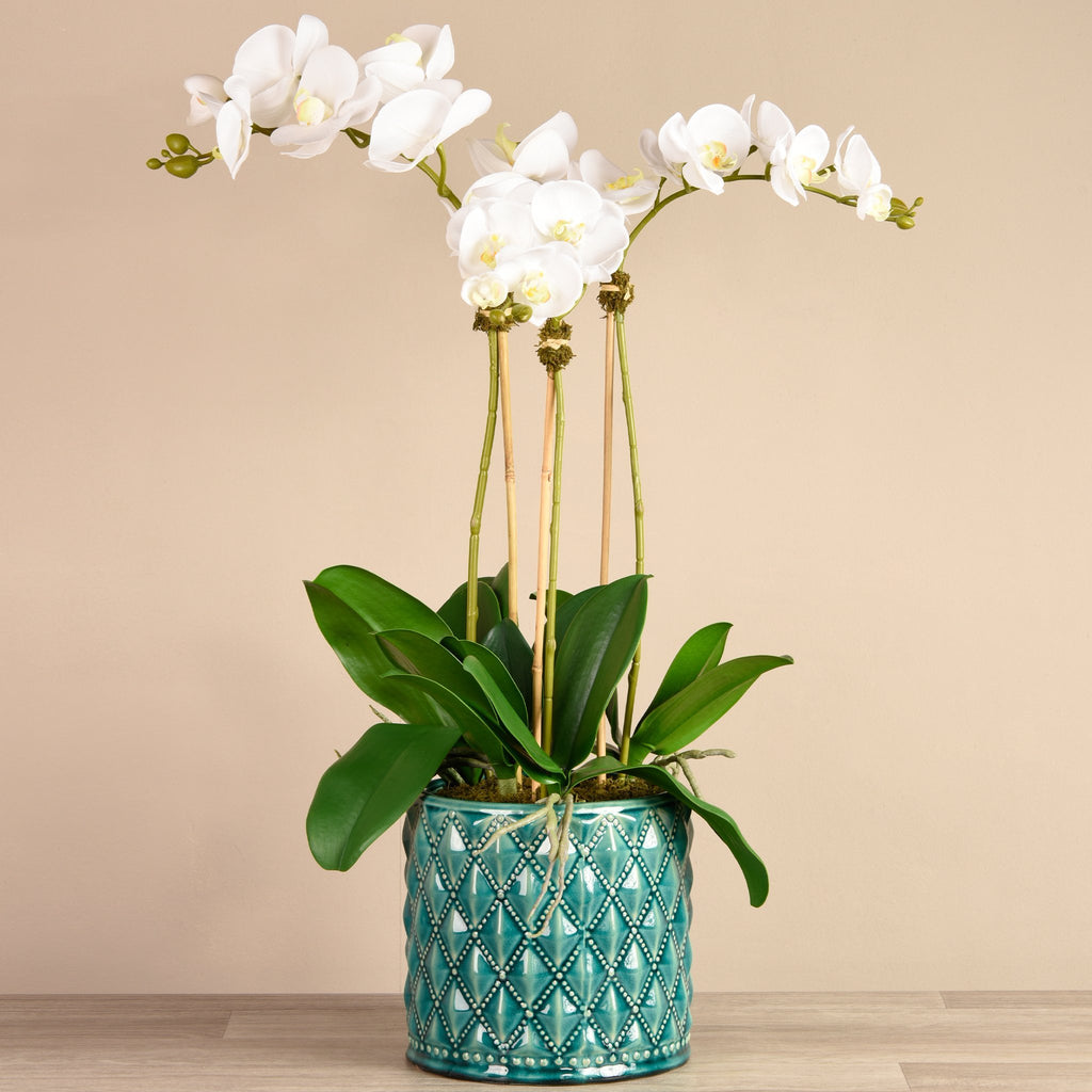 Bloomr Flowers Large Harlequin Orchid Arrangement artificial flowers artificial trees artificial plants faux florals