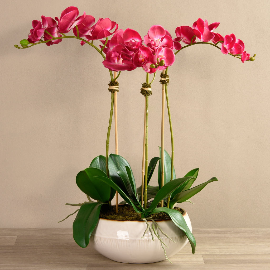 Bloomr Flowers Large / magenta Greenhouse Orchid Arrangement artificial flowers artificial trees artificial plants faux florals