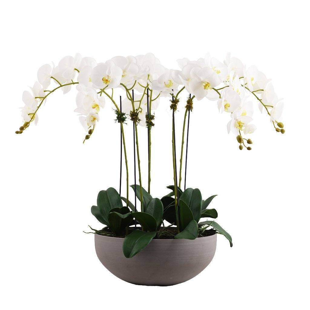 Bloomr Flowers Large / White Sleek Orchid Arrangement artificial flowers artificial trees artificial plants faux florals