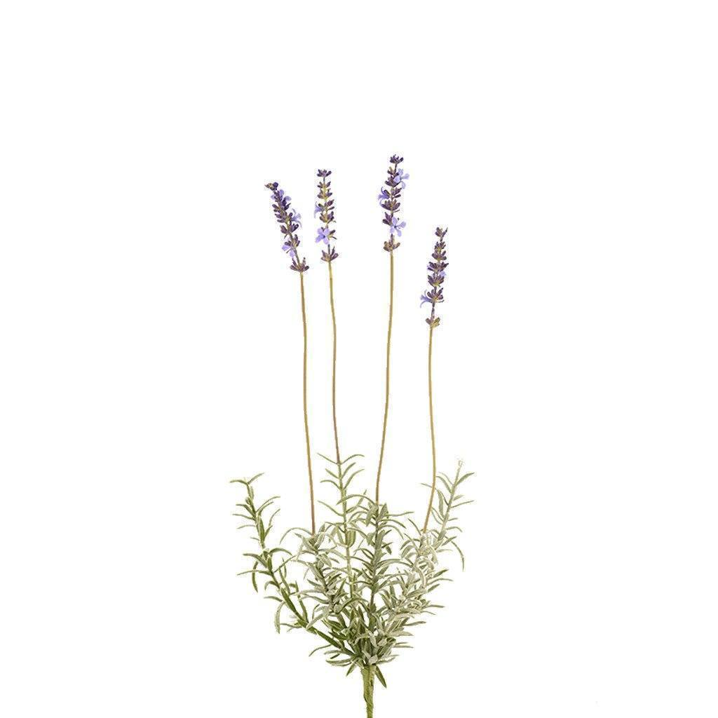 Bloomr Flowers Lavender artificial flowers artificial trees artificial plants faux florals