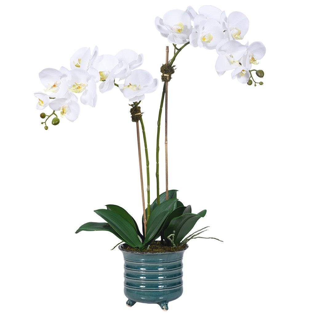 Artificial Art Deco Orchid Arrangement, Faux Art Deco Orchid Arrangement, Fake Art Deco Orchid Arrangement  - Bloomr
