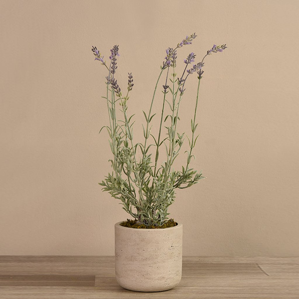 Bloomr Flowers Medium Lavender Potted artificial flowers artificial trees artificial plants faux florals