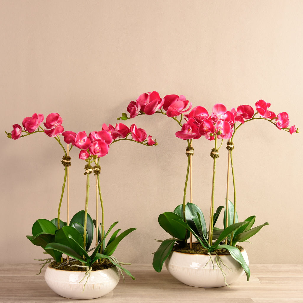 Bloomr Flowers Medium / magenta Greenhouse Orchid Arrangement artificial flowers artificial trees artificial plants faux florals