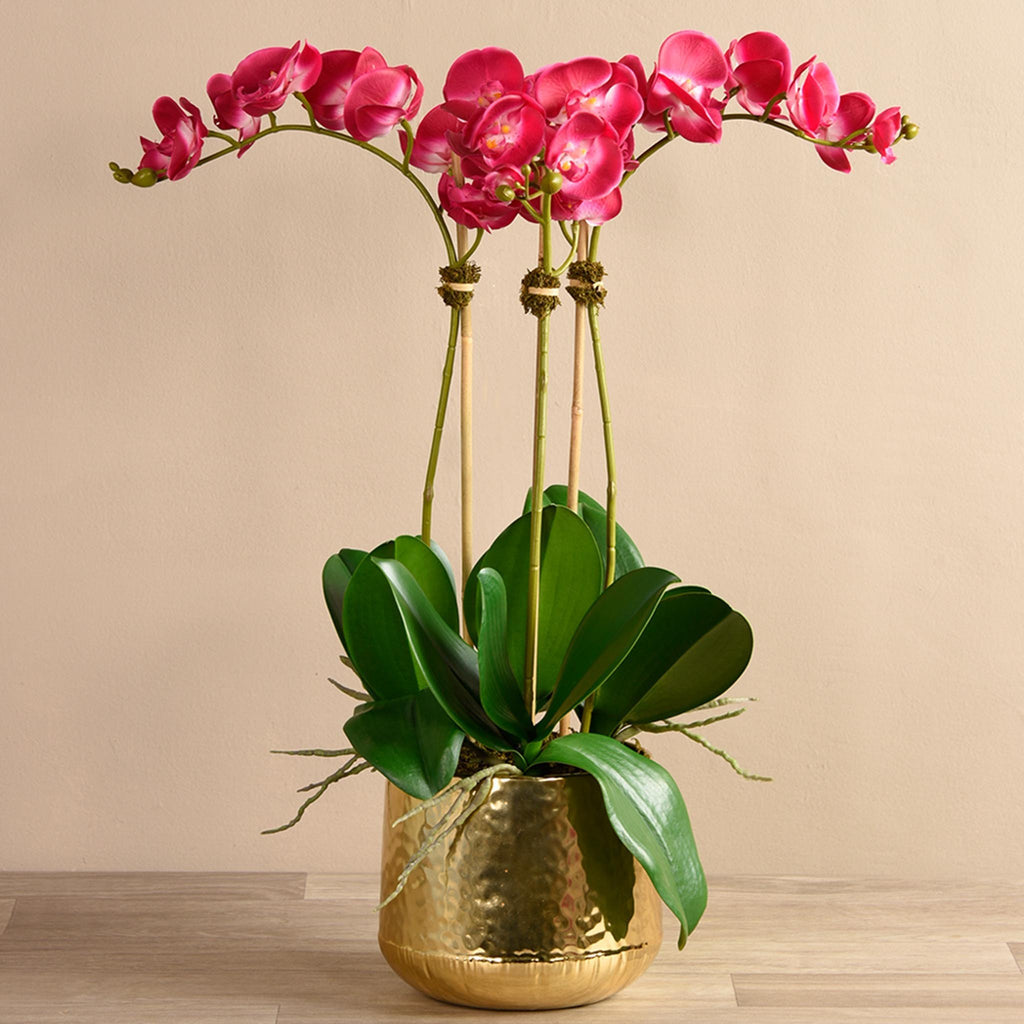 Bloomr Flowers Medium / magenta Parisian Orchid Arrangement artificial flowers artificial trees artificial plants faux florals
