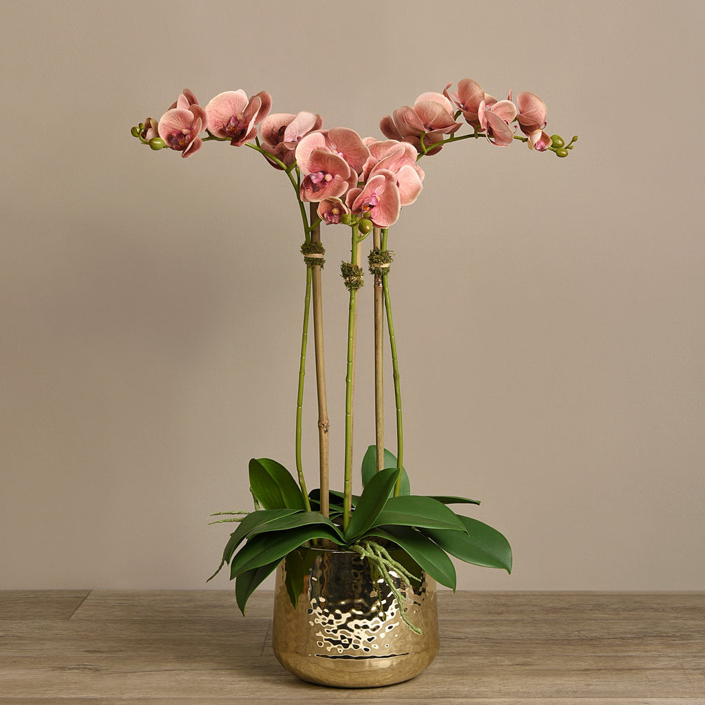 Bloomr Flowers Medium / Pink Parisian Orchid Arrangement artificial flowers artificial trees artificial plants faux florals