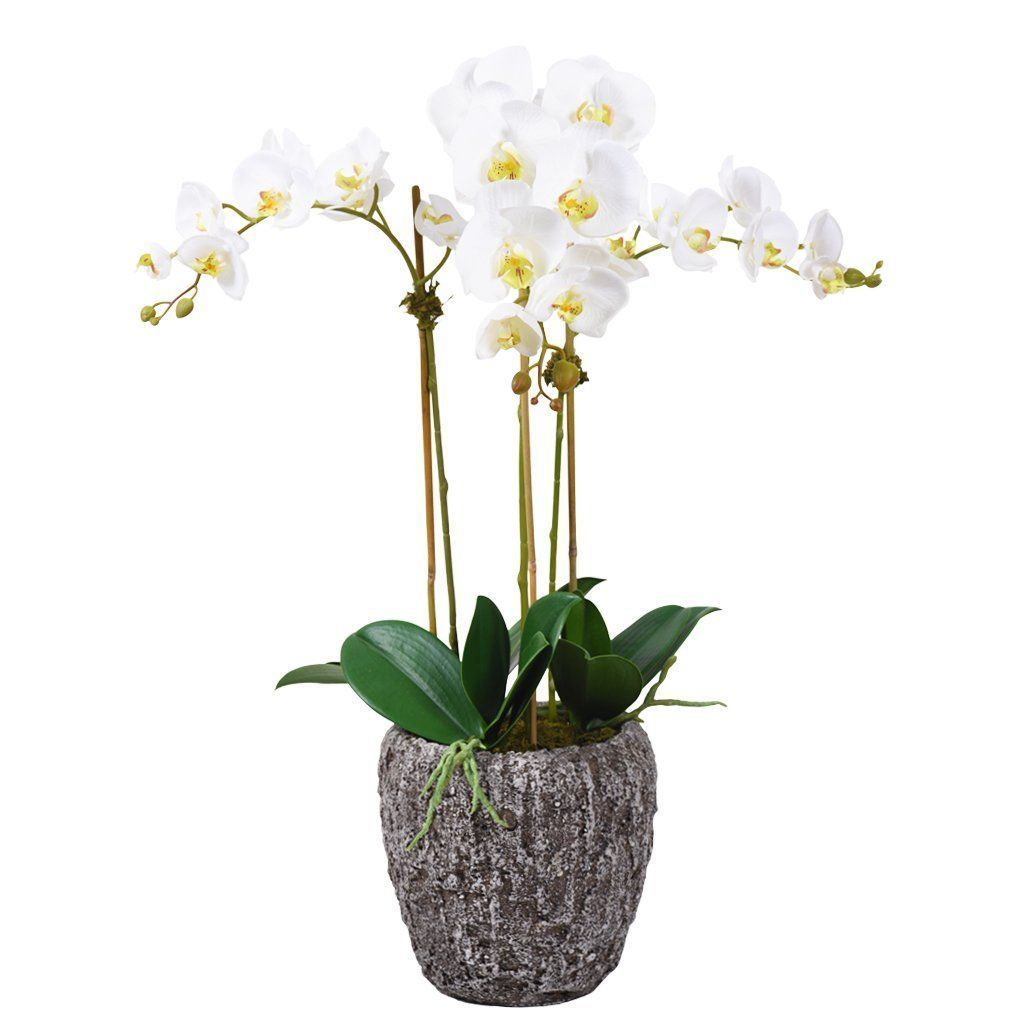 Artificial Earthy Orchid Arrangement, Faux Earthy Orchid Arrangement, Fake Earthy Orchid Arrangement  - Bloomr
