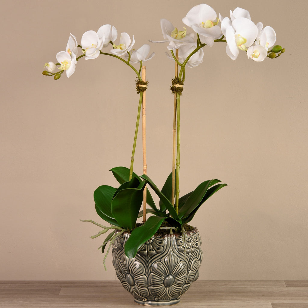 Bloomr Flowers Medium / White Secret Garden Orchid artificial flowers artificial trees artificial plants faux florals